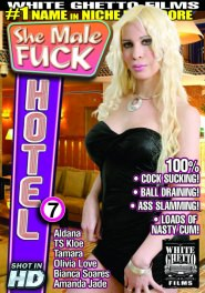 She Male Fuck Hotel #07 Part 2 DVD Cover