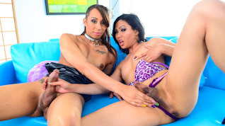 Honey Foxxx B, Annalise Rose