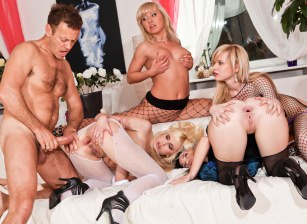 Rocco deep into 4 girls asses