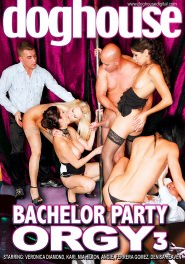 Bachelor Party Orgy #03 DVD Cover
