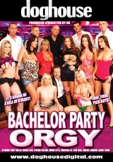 Bachelor Party Orgy Dvd Cover