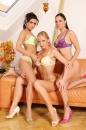 Silvia And 2 Hot Girls - Afternoon Fun picture 11